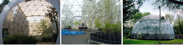 greenhouse_domes